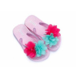 Zebra Slipper flower licht roze