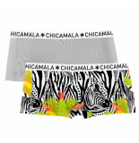 Muchachomalo Girls 2-pack short zebra