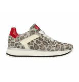 Red Rag Sneaker luipaard met rood lak grijs