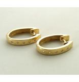 Christian 14 karaat gouden oorbellen met diamant geel goud