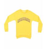 Name It Sweatshirt 13171545 nkfregitse goud