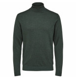 Selected Homme Selected tower roll neck groen