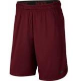 Nike Dry mens training shorts 890811-681 rood