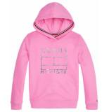 Tommy Hilfiger Sweaters kg0kg04938 roze