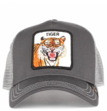 Goorin Bros. Eye of the tiger grijs