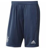 Adidas Bayern munchen trainingsbroekje 2019-2020 kids blauw