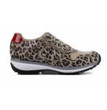 Xsensible Stretchwalker  30042.2 leopard
