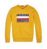 Tommy Hilfiger Sweatshirt kb0kb05474