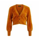 Object Brown vest 23031111 casra knit buckthorn brown - geel